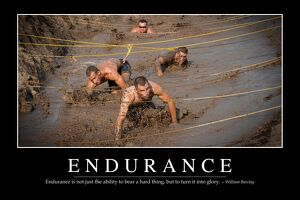 Endurance: Inspirational Quote and Motivational Poster