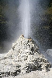 Lady Knox Geyser, Wai-O-Tapu Geothermal area, Taupo Volcanic Zone, New Zealand