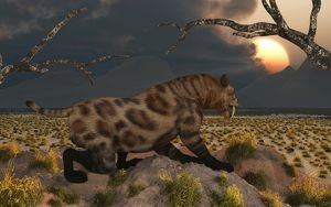 A lone Sabre Tooth Tiger observes the landscape for its next meal