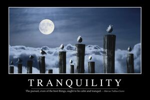 Tranquility: Inspirational Quote and Motivational Poster
