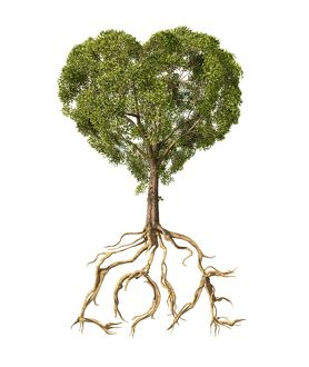 Tree with foliage in the shape of a heart with roots as text Love